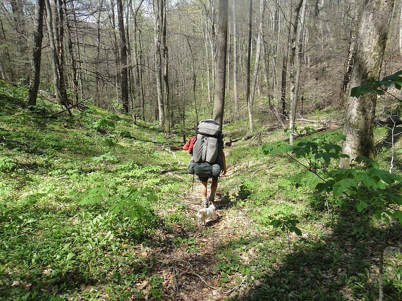 Randy takes this shot of me descending the steep upper part of the North Fork trail.
