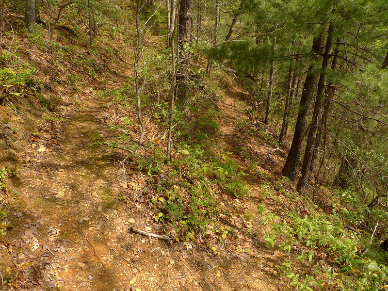 Here is the second lower switchback on the Flats Mt trail.