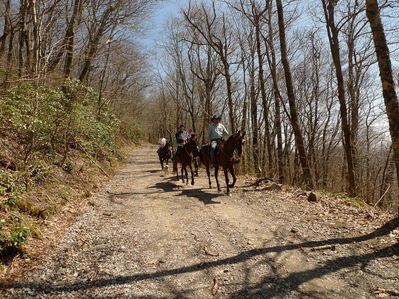 The Horsemen of the Whigg.