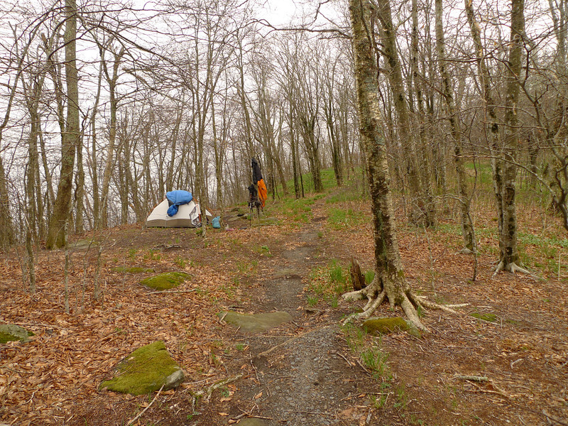 NAKED GROUND CAMP:  I set up all alone at Naked Ground but it soon fills up with friendly fellow backpackers and one who I know.