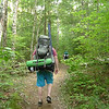 On Day 9 I leave Rough Ridge Camp and follow some backpackers out on the Beech Bottom trail as I try to link back into the Big Frog wilderness.