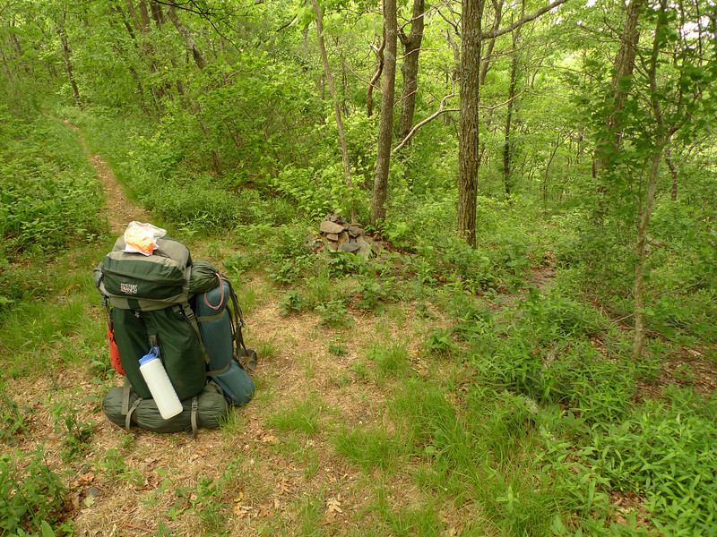 Fork Ridge trail takes me the Big Frog trail where I pass the Big Creek trail jct for a rest.
