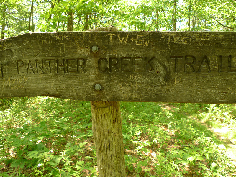 A close up of the Panther Creek trailpost on the East Cowpen trail.  I call the place and the camp Panther Top.