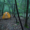 Here is my camp several hundred yards off the Beech Bottom trail.