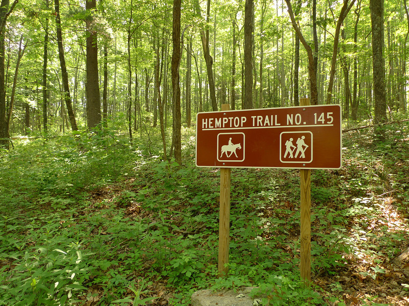 Blessed Relief!  I reach the old Chestnut Mountain trailhead which becomes a long hot uphill slog on a bone dry trail, so once again I'm humping a full water load for an overnight camp.