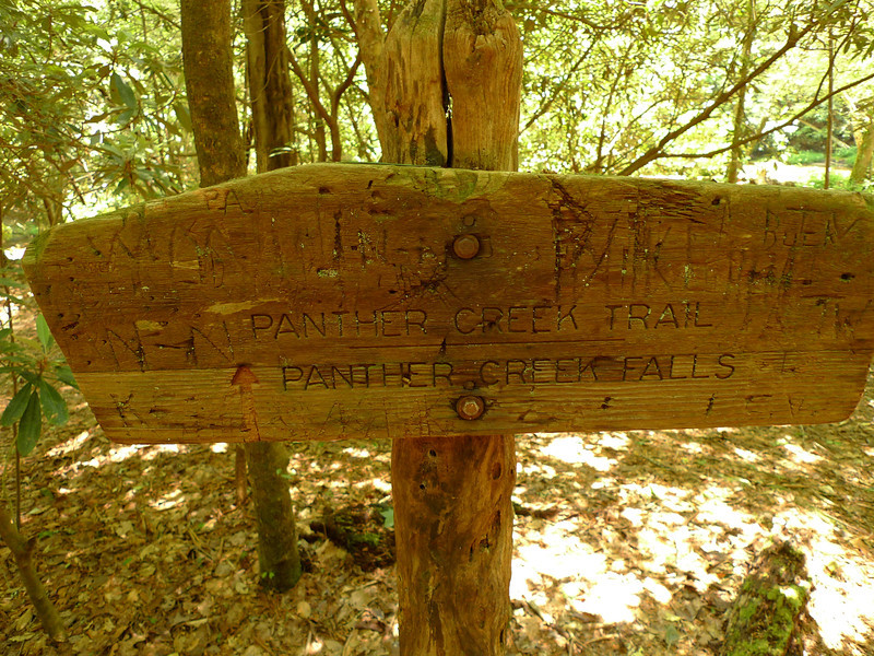 I head up the Conasauga and find this trailpost for the Panther Creek trail, my next day's destination.