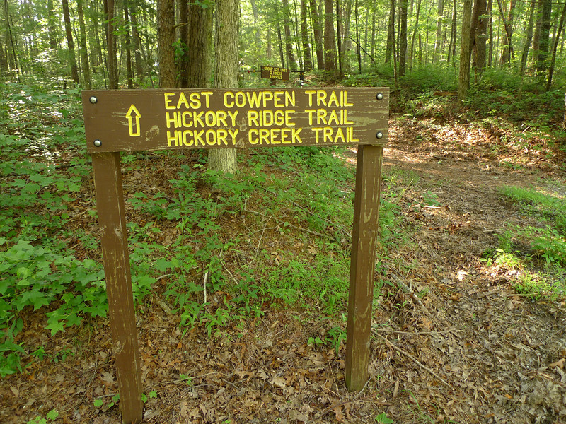 A pretty trailsign.  The trails in the Cohutta are incredibly maintained and much better than the NC trails in Slickrock/Kilmer. I'm taking the Hickory Creek trail all the way to Conasauga River.