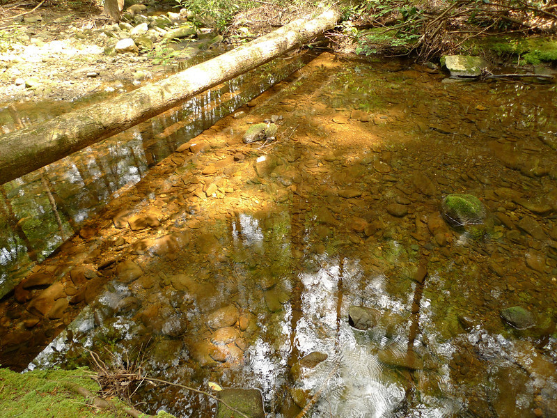Rough Creek is a clean creek and suitable for backpackers.