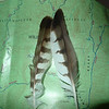 I leave the Jacks and head up the Beech Bottom trail and find these hawk feathers.
