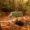 Day 15's site at White Rock Camp on the South Fork Citico.