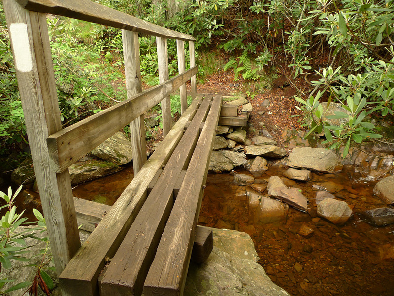 Here's the footbridge going across Wilson Creek by the shelter.