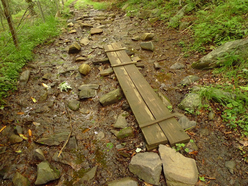 """Just south of Wise Shelter I approach the fence stile into the woods by Quebec Branch and found this little """"footbridge""""."""