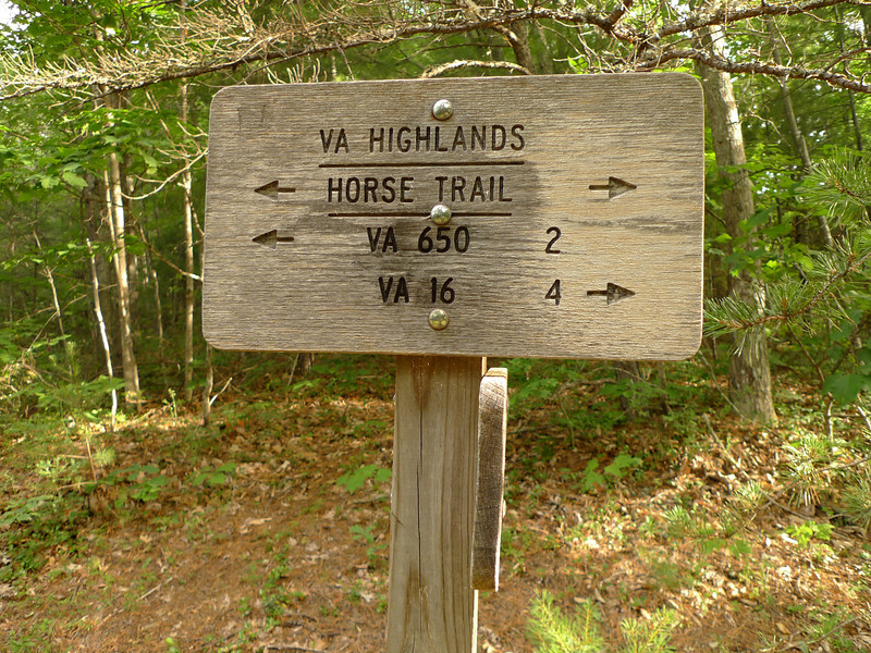 The next day I continue south and hit the Highlands Horse Trail.