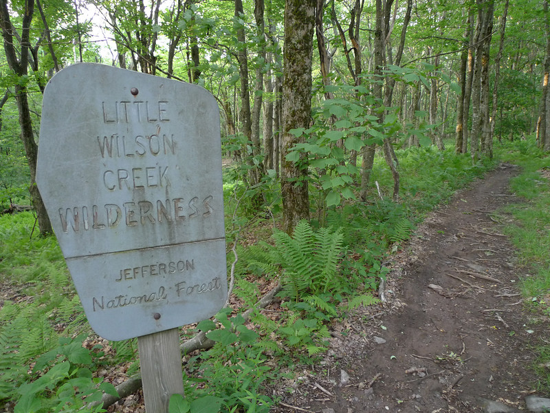 I leave Stone Mt and enter Little Wilson Creek wilderness on the AT South which takes me to Wise Shelter.