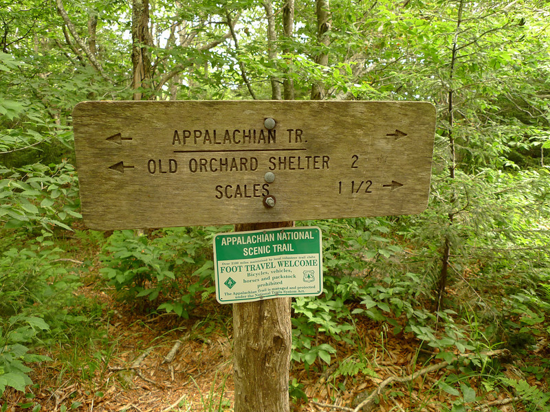 I leave the shelter and climb up to Pine Mt and find this sign.