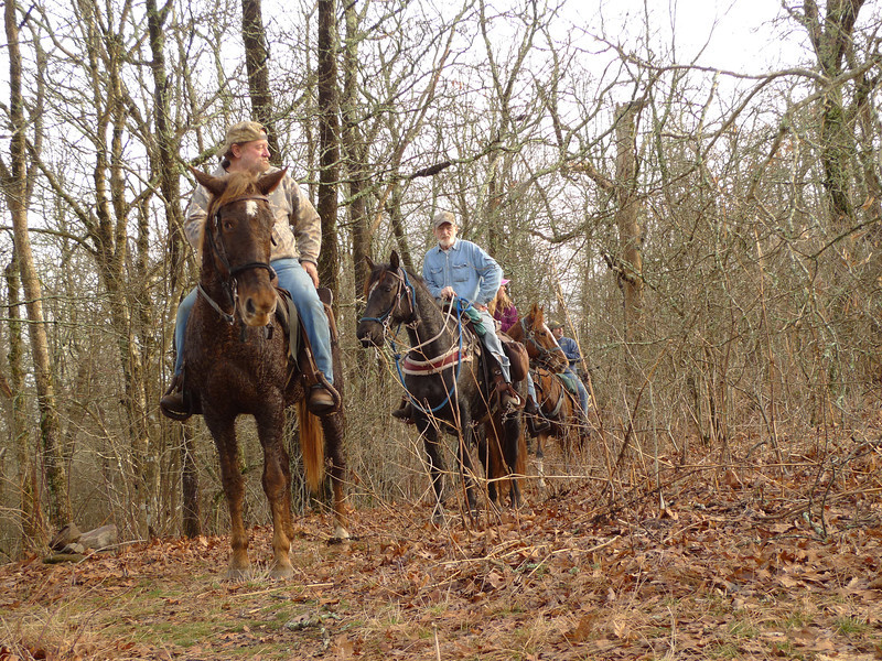 "Wouldn't you know it but Saturday brings the day riders as they do 2 trails off limits to horses---the Licklog Ridge and the complete Big Frog trail down to FS road 221.<br /> <br /> JOURNAL<br /> <br /> DAY ELEVEN   TRIP 141<br /> <br /> ZERO DAY<br /> <br /> 67 HOURS OF RAIN<br />     It never stops and in fact it's harder thru this night than the last 2 so I'm approaching 72 hours of continuous rain and it surely sucks yet there's no escape but to sit put and don't be an idiot and pack to move. Where would I go, anyway? It's warmed up enough to sit in baselayer tops (t-shirt over silk long sleeve turtleneck) and the turtle fur hat. Some kind of tropical monsoon system has stalled over the Frog and it's getting damn old. These zero days were not planned as certain though I wanted to zero out the weekend on the Frog anyway to see if it gets any visitors but it turns out these zeroes are required to get thru these 4 days of true crap. Thankfully I'm in a Hilleberg which keeps me dry from the wet and the wind whipped rain. Chattanooga weather says it'll be in the 70F's today with a ""better chance of rain on Sunday."" Good God but ""turning colder on Monday with more rain."" I could be breaking another record, boys.<br /> <br /> FOUR MICE<br />     They're active on the Frog and I could be here another 4 days but let's pray not. There's no way my food bags would be outside thru this 72 hour rainstorm and the Frog has a healthy rodent population so figure you'll get some visitors. There's nothing which keeps backpackers away than this kind of weather so I'll just have to bear it alone.<br /> <br /> FULL LIGHT WITH HOT TEA<br />     I'm now into my 73rd hour of rain and I got here on Day 8 and I'm still here on Day 11. It's a Saturday but the Frog is empty of hominids except for me.<br /> <br /> 25 DEAD TREES<br />     I went thru all 4 camps and counted a total of 25 dead trees of significant size which shows a healthy mountaintop forest. The sky is dark and portending rain but it stopped so I got to hike around as if I'm a normal bipedal.<br /> <br /> NEWS<br />     Florida's python slaughter---the state is cutting lose its citizen-death squads to hunt down and ""harvest"" the pythons. The idiot who gets the most gets $1,500. Here's a better idea---Get rid of Floridians and leave the snakes. Have the snakes fouled the air with car exhaust and jet pollution? Have the snakes drained the wetlands and caused unbridled sprawl? Have the snakes bulldozed forests and built highways and Interstates? Have the snakes ruined the coast line with cities, beach houses, no trespassing and development? And who brought the snakes into Florida to begin with? You got it---bonobo motarded anuses we call humans.<br /> <br /> DEATH SQUADS<br />     So once again death squads are given free rein in state sponsored ethnic cleansing. At least it's ethnic cleansing if you're one of the pythons. Once again it's the killing of the innocents by the same people who caused the problem to begin with. A much better solution would be to track down everyone who ever relased a python into the wild and throw them into a pit of pythons but no, they get off scot free while the snakes pay the ultimate price. How come now the state of Florida is so dang concerned with ecology when it never was before in the '50's and '60's and '70' and '80's and '90's?? Where is the state ecologists to mandate limited growth or a reduction in air traffic or population or turning Miami into a bicycle city and kicking out cars?<br /> <br /> SNUFF FILMS<br />     Nope, let's put on our ecology hats and pick on the snakes. And then there's a snuff film show on TV about going out and killing alligators while the bonobo Florida humans replicate like bacteria. We live in a human centrist world and have become the tyrants of the age. Can we somehow be humbled? No. Here's an ecological fact for you---In 1492 the state of Florida (or the landmass later known as Florida) had 350,000 humans. Now it has 27 million. Where are the ecologists to fight against this abnormal, unnatural and unsustainable growth? They're loading their shotguns against the snakes. Whatever the pythons are eating will never be as bad as what us humans are eating and have eaten.<br /> <br />     We've eaten up the whole state of Florida but it's the snakes who get targeted. Hey scientists---we're animals too and no different than the mammals and reptiles. We play God because we've been brainwashed to believe we're not mammals or animals and we believe of course that we're made in God's image. How flattering and convenient. Now go out there your lordship and get to slaughtering. This is just a baby rant, I could get really steamed if I thought about it.<br /> <br /> NATIONAL PARK PIG SLAUGHTER<br />     It's the same thing with the slaughter of pigs in the Smokies. Where were these same ecologists when the Park got completely ravaged by logging? Where are the ecologists as 10 million cars enter the Park and pollute the air? Nope, let's pick on the pigs cuz we're as gods and nothing we do in the Park can be judged or stopped. But those damn pigs! Do the pigs have bumper to bumper traffic on a road they built thru Cades Cove? Did the pigs build a blight to humanity called Gatlinburg? It's a Saturday sermon. See, when I don't have visitors I rant.<br /> <br />     What would happen if Tennesseans found a people they hated and wanted removed? Oops we already had that harvest and they were called Indians.<br /> <br /> NEWS<br />     Try to swift boat Chuck Hagel, idiots.<br /> <br /> BEAR LINE REFUGEE CAMP<br />     I see blue sky and so a water run is done and the bear line strung 20 feet across and on it hang my bag, rain jacket, tent sack, pole sack, pack cover, pillowcase, meltdown jacket, down parka and down pants.   Everything is airing out after days of rain. Today I could move as the rain stopped 2 hours ago but it's a Saturday and time to sit put just in case and on a very slim chance Hootyhoo or anyone else pops in. I gotta give the Frog a full Saturday just to see what quality backpackers we have in TN and Georgia.<br /> <br /> JANUARY IS THE NEW MAY<br />     Just as December is the new October, so is January the new May because it's around 70F atop Big Frog Mt on January 12. Crazy, boys. The sun's out which is excellent and I hear voices coming up the Licklog trail and they may swing over the Frog soon enough or they could be B Mackers coming up from Double Springs as it's a real nutbuster climbing 800 feet in .8 mile.<br /> <br /> FOUR HORSEMEN<br />     They come up the Licklog---not allowed---and go down the Big Frog---not allowed---and probably will be taking Fork Ridge to Rough Creek and back out on Licklog, all illegal routes for horses. I told them so but they blazed on. The horsemen make me want to pack and do a nighthike somewhere else but they leave so I'll either see their sign going down the Licklog or the Big Frog as both trails will take me north back into the wilderness.<br /> <br /> PEYTON MANNING REDUX<br />     Remember what I said about Peyton being over-rated because he seems to throw interceptions at crunch time? Well, he does it again tonight (Jan 12) during the 2nd overtime which allows the Ravens to kick the playoff game winning field goal. One mistake and the Denver season is over.<br /> <br /> LITTLE MITTEN ON THE HORN<br />     My last night on the Frog gets me to pull a nokia reach out whereby I speak to Mitten and touch base with my little valentine zygoat. I hike back to camp with a clean heart and plan tomorrow's hike to new trails I have never hiked and so I pull out the map and get the wheels turning. Will it be Licklog or Big Frog? I won't know until the pack is on my back and the first step out of camp occurs. Will it be down to the Jacks? Naw, let's stick with the Frog side as I can do the Cohut in February. I need to come up with some plan for the next week. My route will be determined by rain possibilities and I'll breeze to Low Gap on the Big Frog. If it's partly sunny I'll take Licklog.<br /> <br /> Tipi Walter"