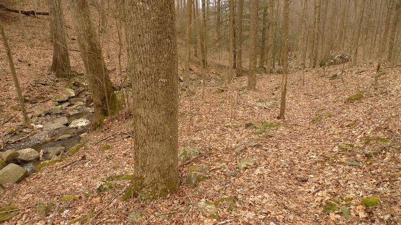 I descend the Big Creek trail which is nice and the upper part is shown here.