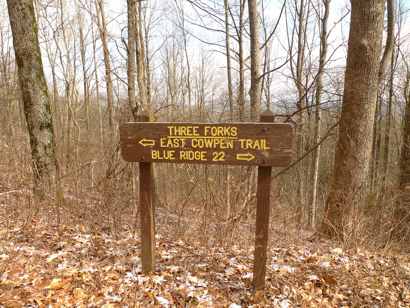 I make it to 3 Forks Mt but the climbing doesn't stop as I get on the East Cowpen trail.