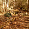 My campsite in the Beech Bottoms area and the only one allowed by the Tent Police during the winter season.