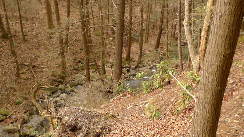 A view of Penitentiary Creek from the Grassy Gap trail heading to Low Gap.