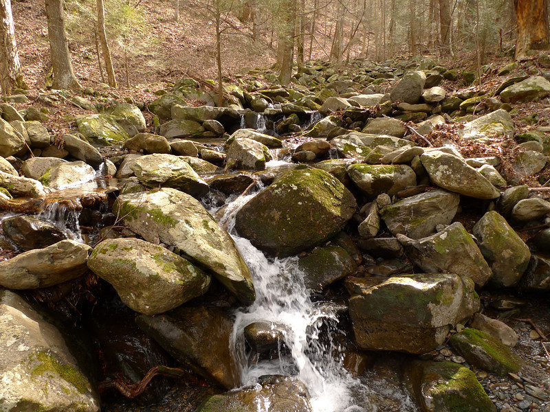 The biggest creek on the Grassy Gap trail is Penitentiary Branch but not to be confused with the Penitentiary trail in the Cohutta.