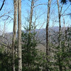 A view of Big Frog Mt from the Hickory Ridge trail.