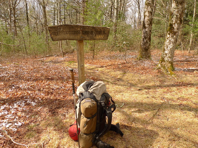 I make it to the jct of Panther Creek trail which is where I decide to camp after finding a water spring down the Panther trail a half mile.