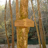 The Hickory Ridge trailsign on the opposite side of Jacks River, the Beech Bottoms side.