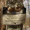A tree eats another trail sign.