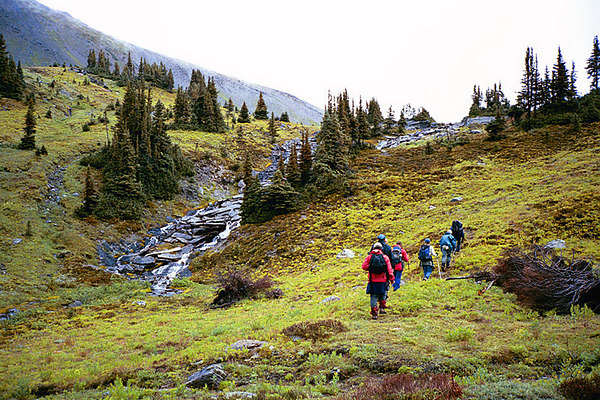 Canadian Rockies 2002