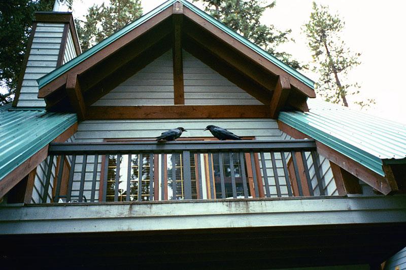 15 - Emerald Lake Lodge