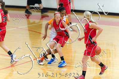 RH Basketball-2500