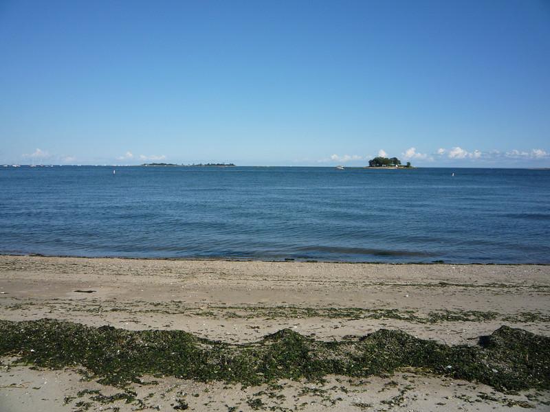 Calf Pasture Beach (5)