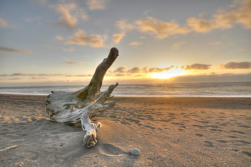 Lost Coast 1