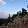 Trail to Bristle Cone Pines