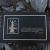 Bristle Cone Pine Interpretive Sign