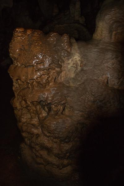 Lehman Caves Alien Skin