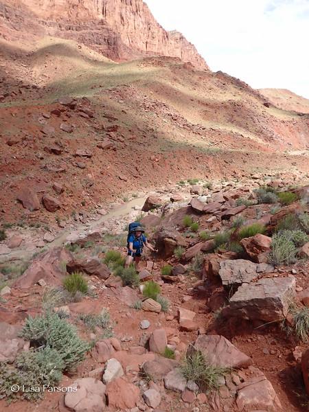 Climbing Again