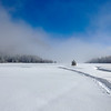 Ski Tracks in Snow in Grass Lake Meadown in the Sierra Nevadas