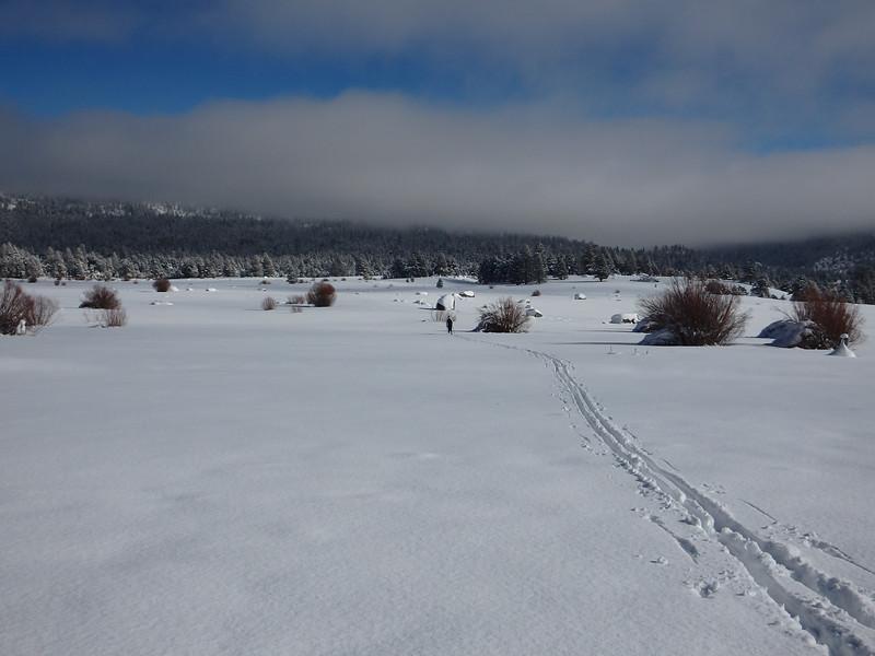 Fresh Cross Country Ski Tracks in Hope Valley