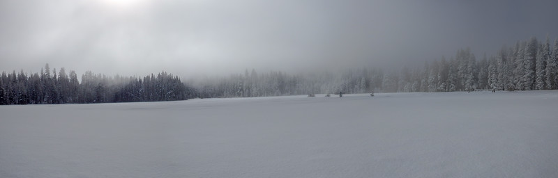 Snow Covered Forest and Ice Fog on Grass Lake Meadow in the Sierra Nevadas