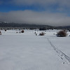 Fresh Cross Country Ski Tracks in Hope Valley