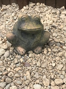 Frog mascot in place