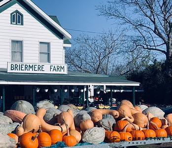 Briermere Farm