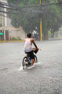 Images taken in Manila a few hours after the typhoon Frank (fengshen) hit the capital of Philippines. Bicyclist riding under heavy rain in the middle of a flooded boulevard