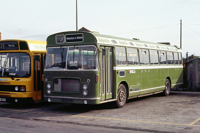 Badgerline 1182 Wells Depot May 86