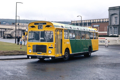 Badgerline 1092 Beach Rd Weston Super Mare May 86