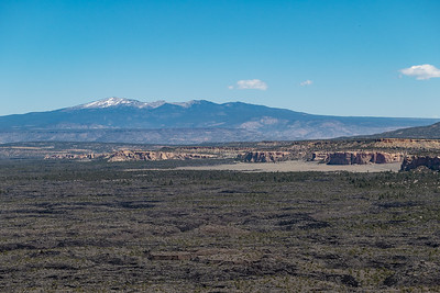 Lava fields below Mount Taylor