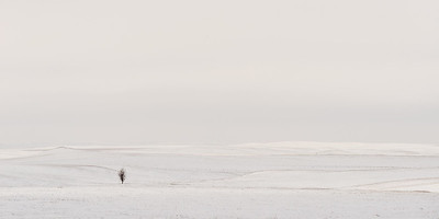 Alone in South Dakota in January