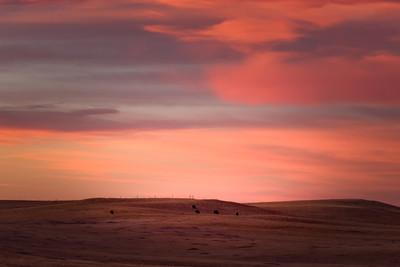 Prairie Fire Sky